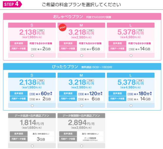 UQモバイルの料金シミュレーション4