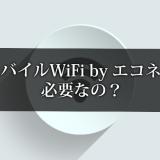 楽天モバイルWiFi by エコネクトは必要なの?
