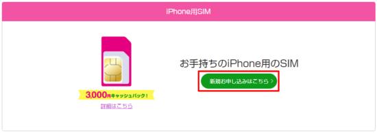 iPhone用SIM