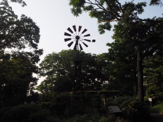 港の見える丘公園の風車