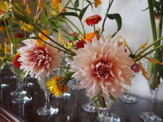 イギリス館の花