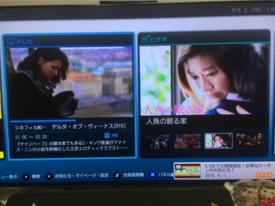 アダルト 楽天 テレビ