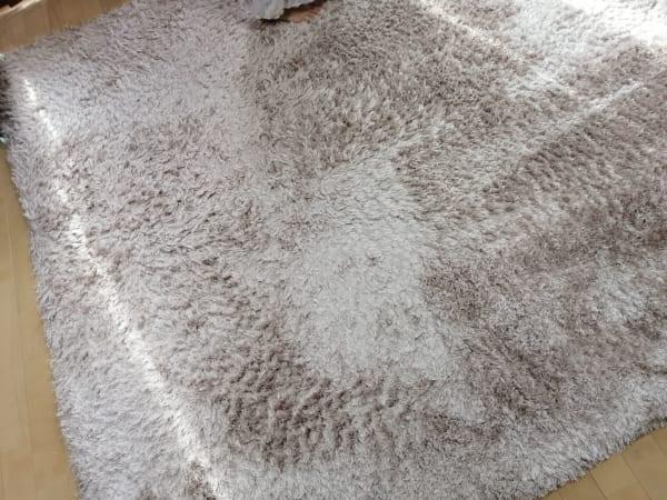 掃除後のカーペット
